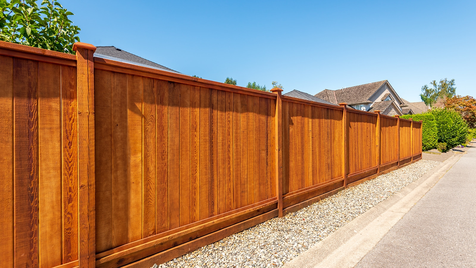 Privacy Fences Featured Image Banner